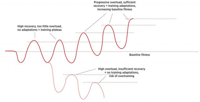 Training Progressive Overload