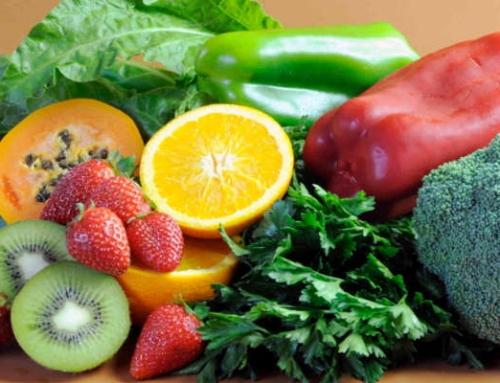 Top Nutrition Tips for Training Camps